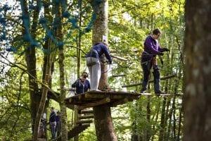 lough key forest park activity park