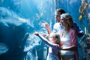 hotel guests at london aquarium